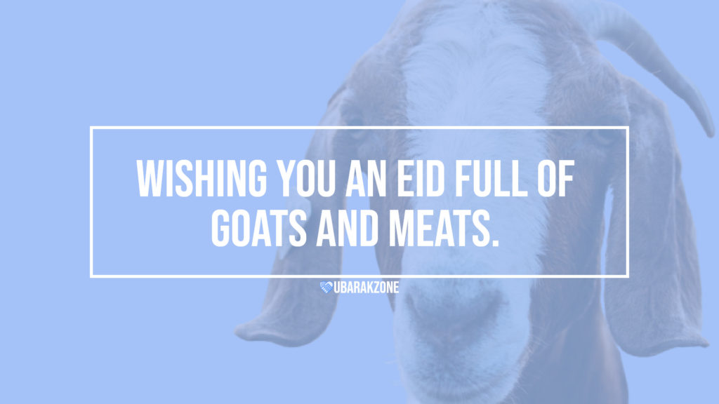 bakra eid mubarak wishes messages - 04