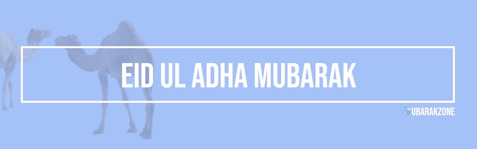 eid ul adha mubarak wishes messages